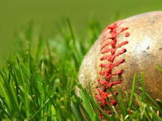 обои Бейсбольный мяч на газоне фото