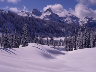 обои Вулкан Рейнир Вашингтон фото