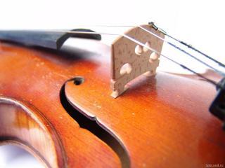обои Скрипка с узорами фото