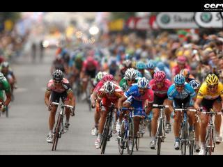 обои Велогонка на трассе фото