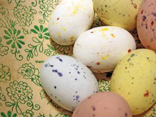 обои Яйца в крапинку - творческий беспорядок фото