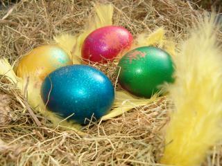 обои Яйца, лежащие на соломке и украшенные желтыми перьями фото