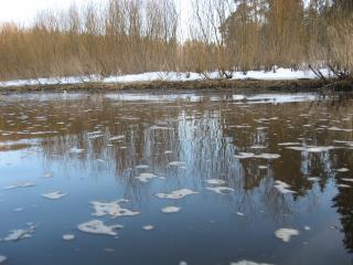 обои Отражение в воде фото