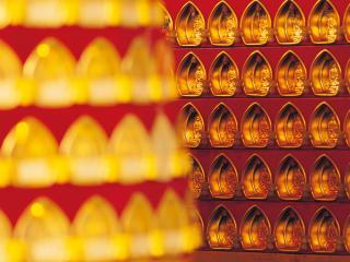 обои Китайское золото фото
