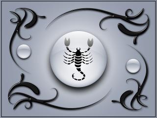 обои Знак зодиака Скорпион фото