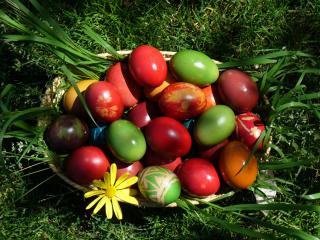 обои Multi-colored Easter eggs фото