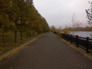 обои Осенняя набережная фото