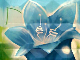 обои Граффити голубая лилия фото