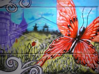 обои Граффити красивая бабочка фото