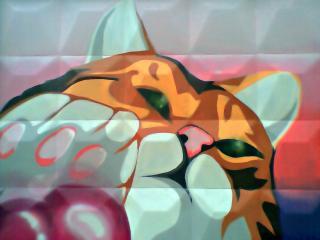 обои Граффити рыжий кот фото
