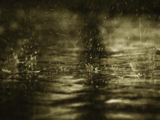 обои Дождик по лужам фото