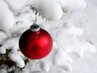 обои Красный новогодний шарик фото