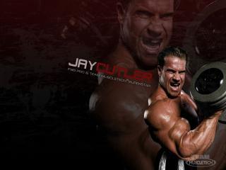 обои Jay Cutler фото