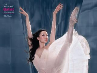 обои Балерина фото