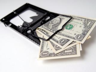 обои Деньги в мышеловке фото
