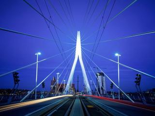 обои Erasmus Bridge, Rotterdam фото