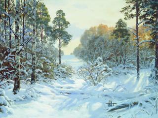 обои Зимний лес. Просека фото