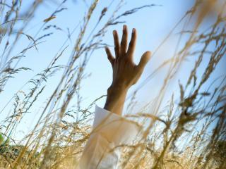 обои Рука тянется к небу фото