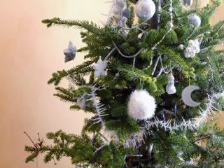 обои Рождественская елка фото