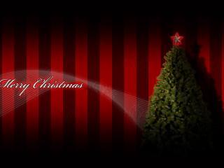обои Сочельник Рождества - всё замерло фото
