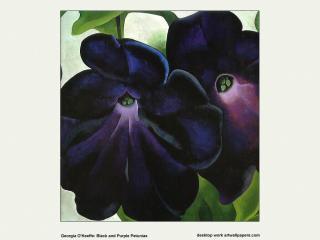обои Джорджия О'Киф - Black and Purple Petunias фото