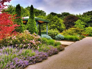 обои Летний сад фото