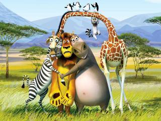 """обои Четверо героев из """"Мадагаскара"""" в Африке фото"""