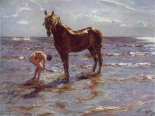 обои Купание коня фото