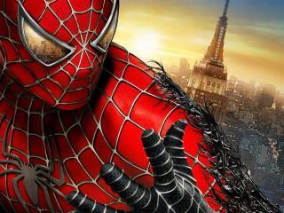 обои Человек-паук на вершине города фото