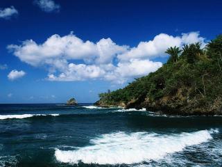 обои Берег на райском острове фото
