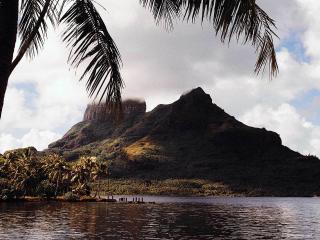обои Столовая гора острова в тумане фото