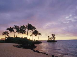 обои Остров, усеянный редкими пальмами фото