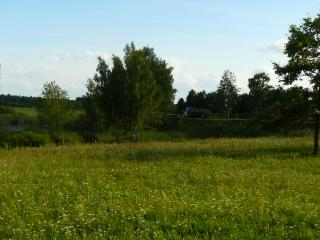 обои Русская природа летом фото