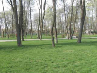 обои Городской парк г. Бреста Беларуси фото