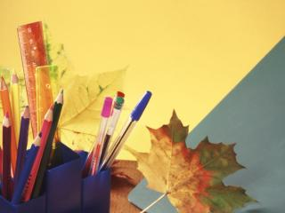 обои Листья осени фото