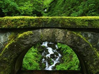 обои для рабочего стола: Зеленая арка
