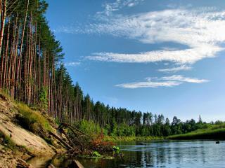 обои Река Кокшага фото