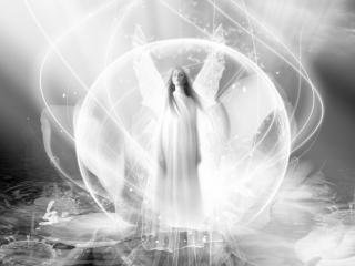 обои Рождение ангела фото