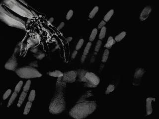 обои Hands and fingers фото