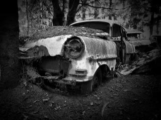 обои Old forest car фото