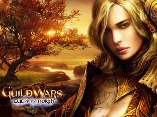 обои Guild Wars II Светлый эльф фото