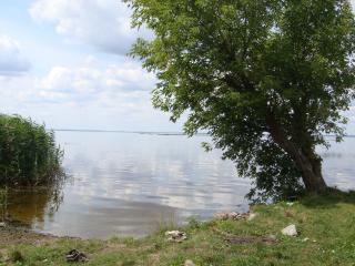 обои Левый берег Днепра Украина фото