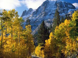 обои Осень в Альпах фото