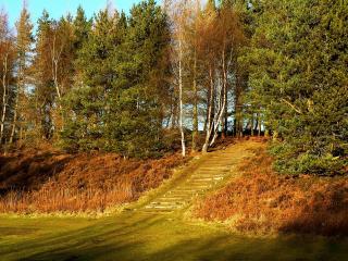 обои Древняя лестница фото