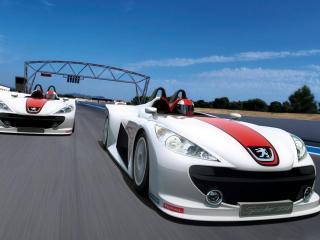 обои Два Peugeot Spider 207 соревнуются друг с другом фото