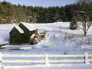 обои Одинокий домик среди зимнего леса фото