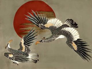 обои Птицы - символ прозорливости и силы фото