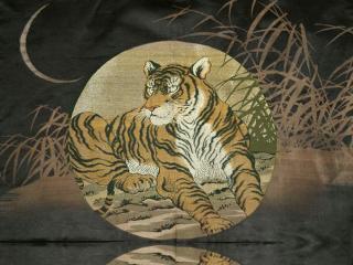 обои Тигр - символ мужества фото