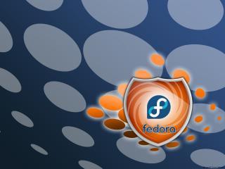 обои Fedora shield фото