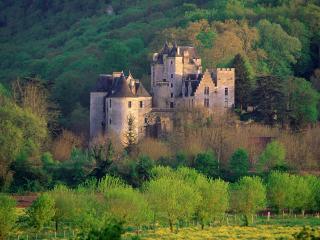 обои Замок в лесу, Франция фото